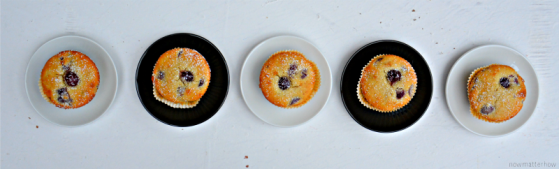 DSC_1882-nowmatterhow.wordpress.com_kirschzitronen.muffins