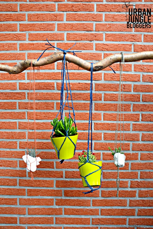 Urban Jungle Bloggers #2 | hanging planters